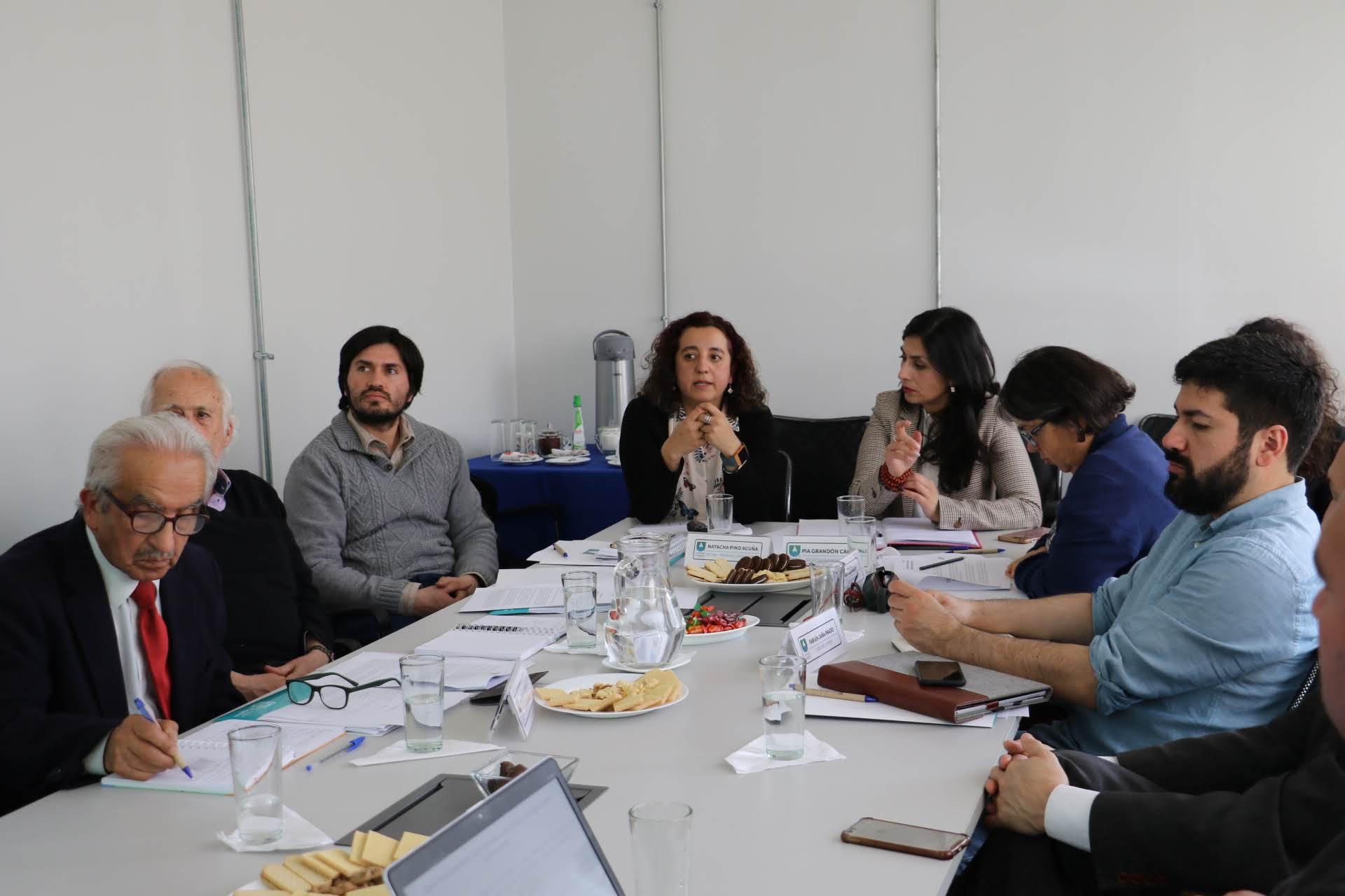 UAysén cuenta con nuevos integrantes del Consejo Superior